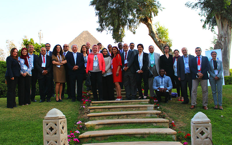 8th MENA Influenza Stakeholders Networks Meeting group