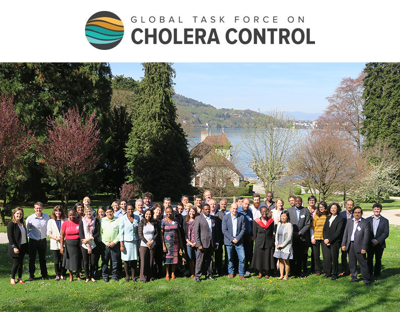 Global Task Force on Cholera Control (GTFCC) surveillance working group meeting group